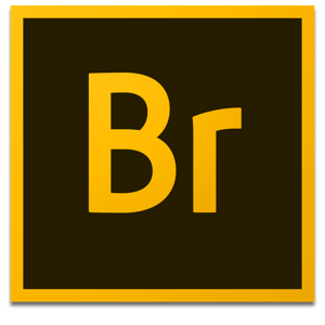 Adobe Bridge logo