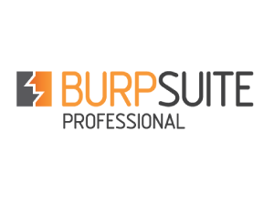 Burp Suite Professional