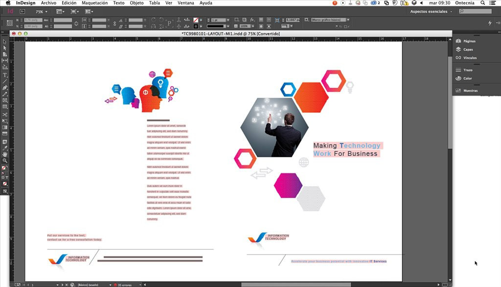 Adobe InDesign1