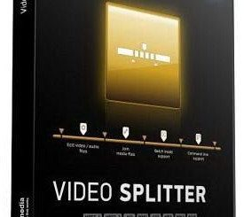 SolveigMM Video Splitter Business